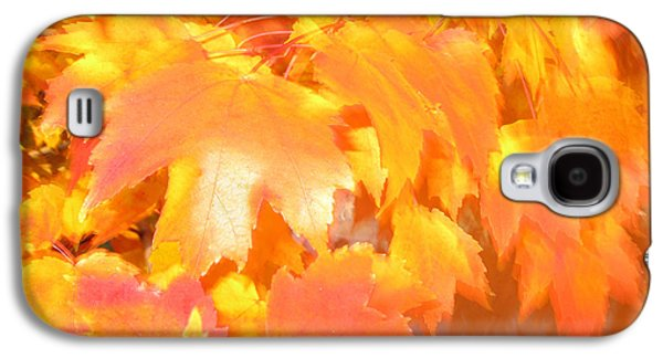 Brown Tones Galaxy S4 Cases - Fall 1 Galaxy S4 Case by Tony Cordoza
