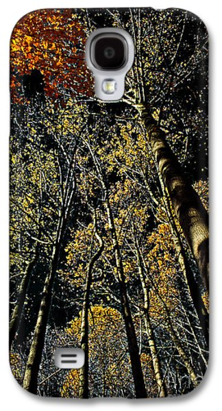 Creepy Galaxy S4 Cases - Fall at Night Galaxy S4 Case by Tom Gari Gallery-Three-Photography