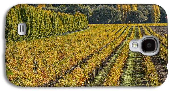 Fall Color Napa Style Galaxy S4 Case by Bill Gallagher