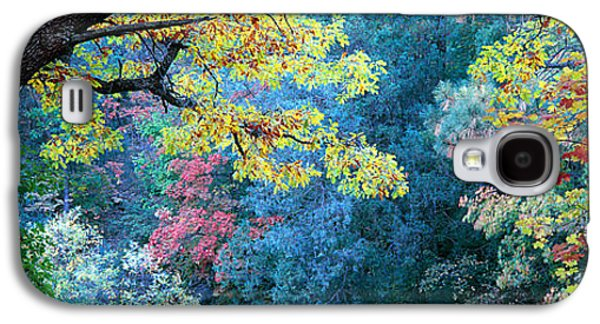 Fourth Of July Galaxy S4 Cases - Fall Colors At Fourth Of July Canyon Galaxy S4 Case by Panoramic Images