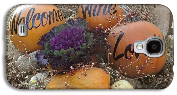 Fall Display At Lost Acres Vineyard Galaxy S4 Case by John Turek