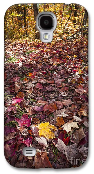Forest Floor Galaxy S4 Cases - Fall forest floor  Galaxy S4 Case by Elena Elisseeva