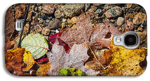 Autumn Foliage Photographs Galaxy S4 Cases - Fall leaves in water Galaxy S4 Case by Elena Elisseeva