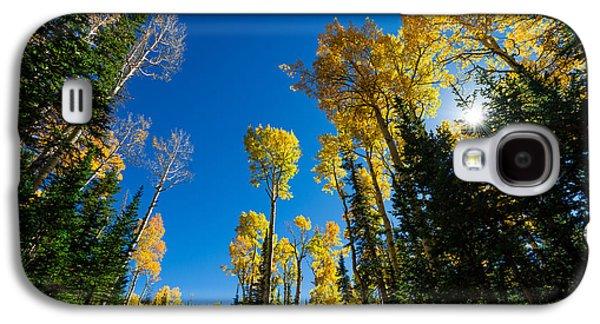 Sun Galaxy S4 Cases - Fall Light Galaxy S4 Case by Chad Dutson