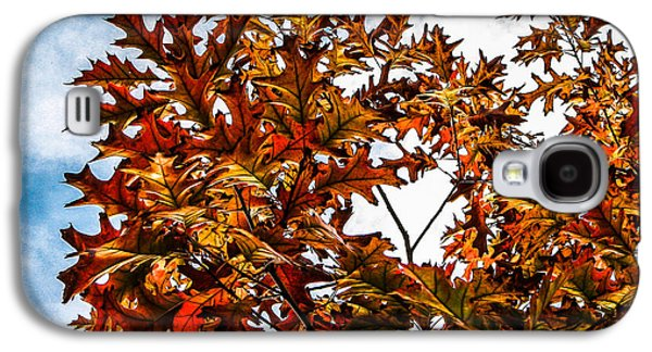 Haybale Galaxy S4 Cases - Fall Maple Leaves Galaxy S4 Case by Robert Bales