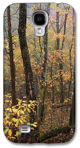 Fog Mist Galaxy S4 Cases - Fall Mist Galaxy S4 Case by Chad Dutson