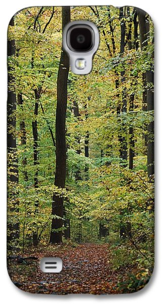 Haverford College Galaxy S4 Cases - Fall Trail Galaxy S4 Case by Judy Gallagher