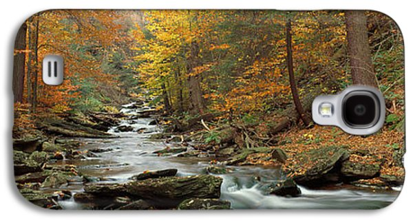 Forest Floor Galaxy S4 Cases - Fall Trees Kitchen Creek Pa Galaxy S4 Case by Panoramic Images