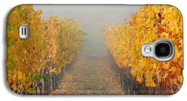 Vintner Galaxy S4 Cases - Fall Vines Galaxy S4 Case by Jean Noren