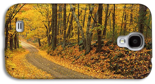 Forest Floor Galaxy S4 Cases - Fall Woods Monadnock Nh Usa Galaxy S4 Case by Panoramic Images