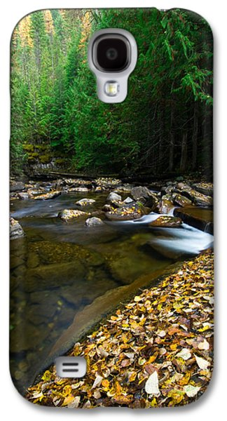Contemplative Photographs Galaxy S4 Cases - Fallen Autumn Color Leaves And Forest Galaxy S4 Case by Panoramic Images