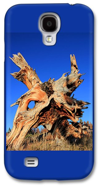 Tree Roots Photographs Galaxy S4 Cases - Fallen Galaxy S4 Case by Shane Bechler