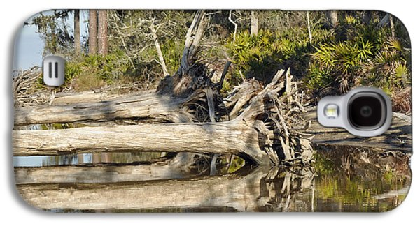 Tidal Photographs Galaxy S4 Cases - Fallen Trees Reflected in a Beach Tidal Pool Galaxy S4 Case by Bruce Gourley