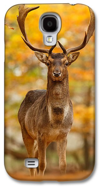 Fall Colors Galaxy S4 Cases - Fallow Deer in Autumn Forest Galaxy S4 Case by Roeselien Raimond