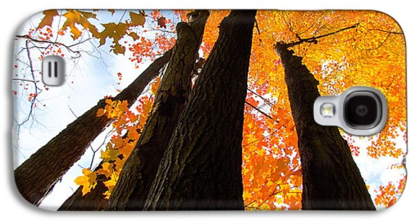 Nature Abstract Galaxy S4 Cases - Famous fall 73 Galaxy S4 Case by France Laliberte