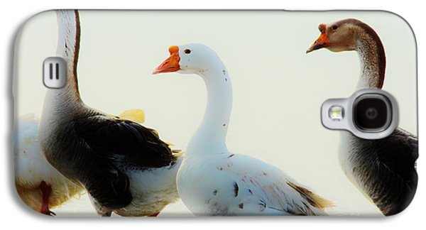 Farm Geese 2 Galaxy S4 Case by Lynda Dawson-Youngclaus