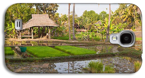 Farmer Working In A Rice Field, Chiang Galaxy S4 Case by Panoramic Images