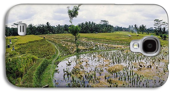 Farmers Working In A Rice Field, Bali Galaxy S4 Case by Panoramic Images