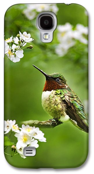 Fauna And Flora - Hummingbird With Flowers Galaxy S4 Case by Christina Rollo