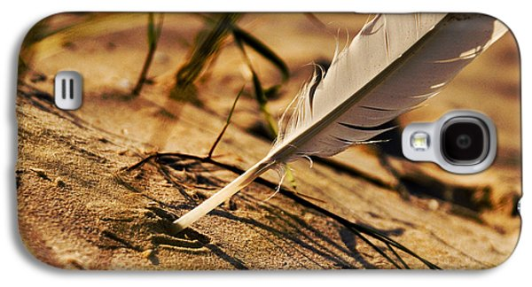 Biology Pyrography Galaxy S4 Cases - Feather And Sand Galaxy S4 Case by Raimond Klavins