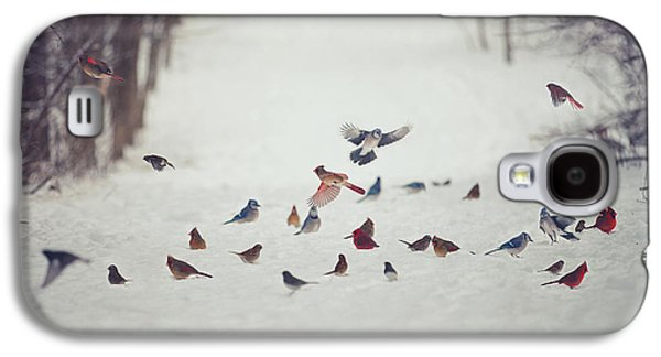 Winter Landscapes Galaxy S4 Cases - Feathered Friends Galaxy S4 Case by Carrie Ann Grippo-Pike