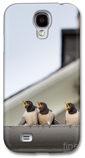 Young Birds Galaxy S4 Cases - Feed Me  Galaxy S4 Case by Tim Gainey