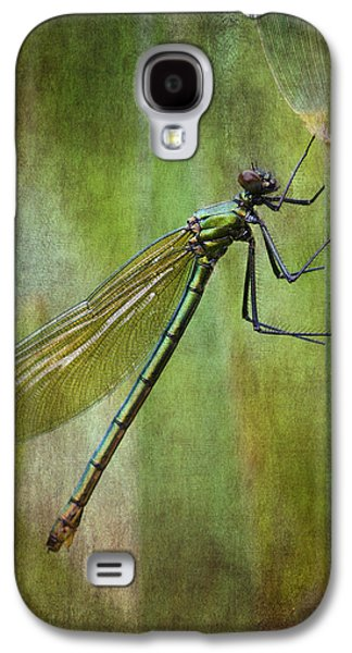 Demoiselles Galaxy S4 Cases - Female Banded demoiselle vintage look Galaxy S4 Case by Chris Smith