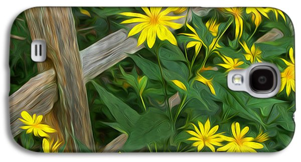 Split Rail Fence Galaxy S4 Cases - Fence and Flowers Galaxy S4 Case by Brian Mollenkopf