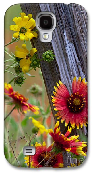 Blanket Galaxy S4 Cases - Fenceline Wildflowers Galaxy S4 Case by Robert Frederick
