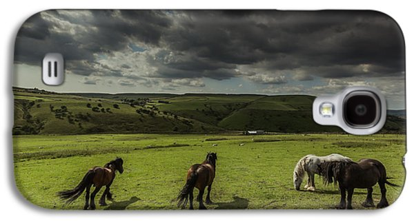 Pasture Scenes Photographs Galaxy S4 Cases - Fetlocked Friends Galaxy S4 Case by Chris Fletcher