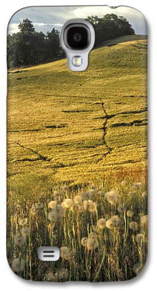 Contour Farming Galaxy S4 Cases - Field and Weeds Galaxy S4 Case by Latah Trail Foundation