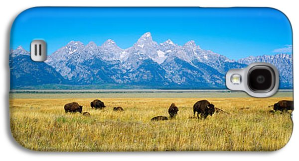 Feeding Photographs Galaxy S4 Cases - Field Of Bison With Mountains Galaxy S4 Case by Panoramic Images