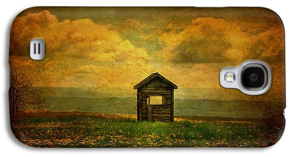Shed Digital Art Galaxy S4 Cases - Field of Dandelions Galaxy S4 Case by Lois Bryan