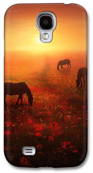 Field Of Dreams Galaxy S4 Case by Jennifer Woodward