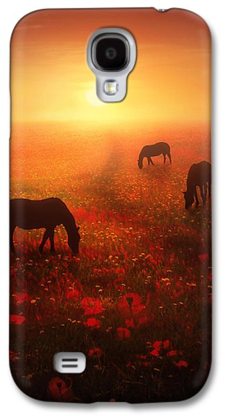Horse Images Galaxy S4 Cases - Field of Dreams Galaxy S4 Case by Jennifer Woodward