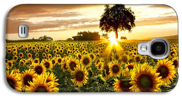Pasture Scenes Photographs Galaxy S4 Cases - Fields of Gold Galaxy S4 Case by Debra and Dave Vanderlaan