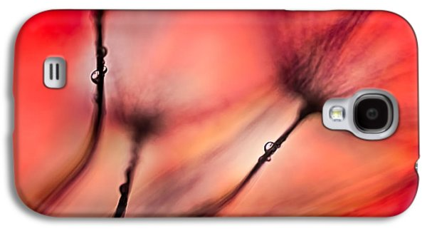 Nature Abstract Galaxy S4 Cases - Fiery Galaxy S4 Case by Ursula Abresch