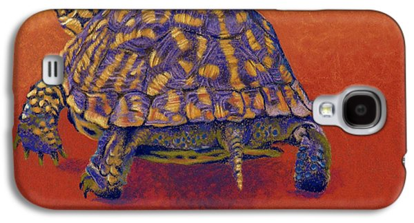 Universities Pastels Galaxy S4 Cases - Fire Walker - Box Turtle Galaxy S4 Case by Tracy L Teeter