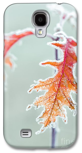 Fall Leaves Galaxy S4 Cases - First Frost Galaxy S4 Case by Lucid Mood