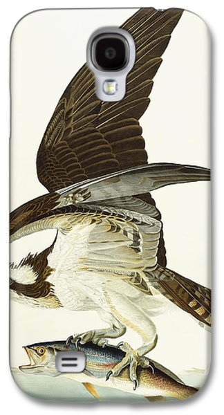 Feather Drawings Galaxy S4 Cases - Fish Hawk Galaxy S4 Case by John James Audubon