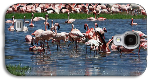 Photosynthetic Galaxy S4 Cases - Flamingo - Lake Nakuru - Kenya Galaxy S4 Case by Aidan Moran
