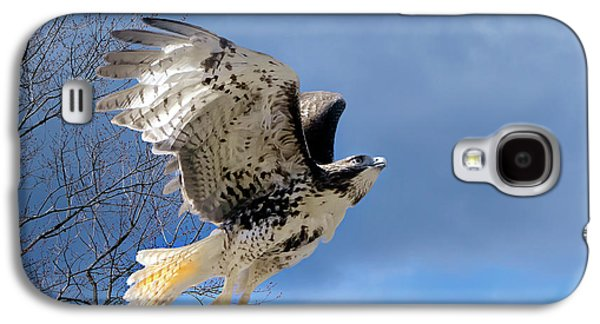 Red Tail Hawk Galaxy S4 Cases - Flight of the Red tail Galaxy S4 Case by Bill  Wakeley