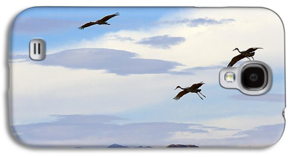 Flight Of The Sandhill Cranes Galaxy S4 Case by Mike  Dawson