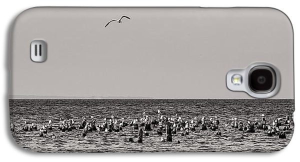 Michigan Galaxy S4 Cases - Flock of Seagulls in Black and White Galaxy S4 Case by Sebastian Musial