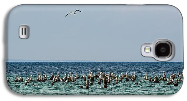 Flock Of Seagulls Galaxy S4 Case by Sebastian Musial