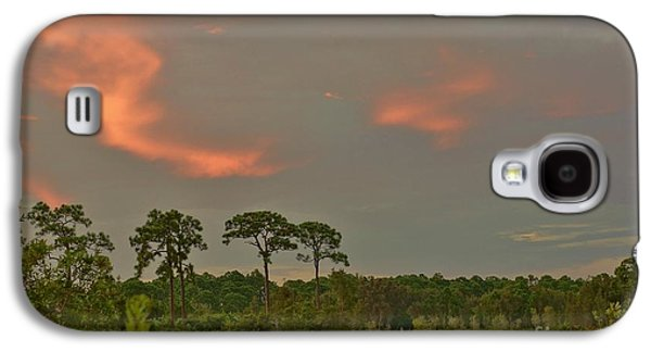 Florida Landscape Galaxy S4 Case by Lynda Dawson-Youngclaus