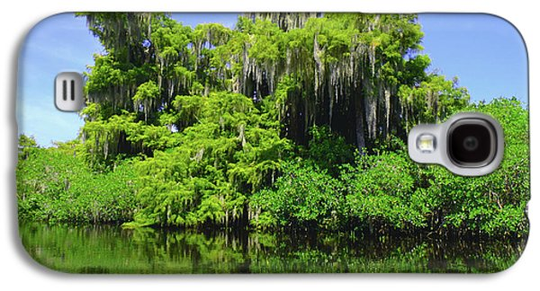 Paddle Galaxy S4 Cases - Florida Swamps Galaxy S4 Case by Carey Chen