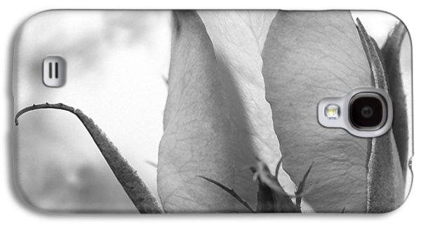 Blooming Galaxy S4 Cases - Blooming Rose Galaxy S4 Case by Mike McGlothlen