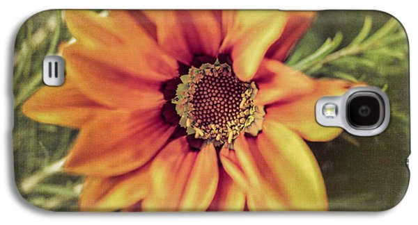Close Focus Floral Galaxy S4 Cases - Flower Beauty I Galaxy S4 Case by Marco Oliveira