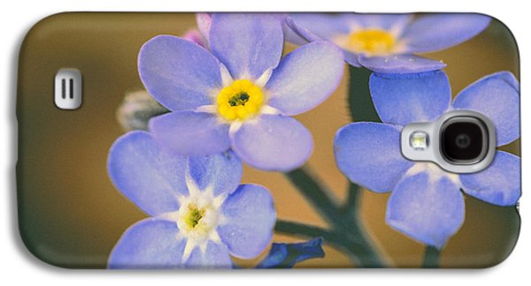 Close Focus Floral Galaxy S4 Cases - Forget Me Nots Galaxy S4 Case by Marco Oliveira